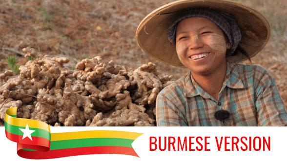 Course Image မြန်မာနိုင်ငံ၏ ချင်းစိုက်တောင်သူများအတွက် လုပ်ငန်းခွင်ဘေးကင်းလုံခြုံရေးနှင့် ကျန်းမာရေးသင်တန်း